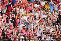 SÃO PAULO, SP, 10.11.2018 - BRASIL RUGBY-ALL BLACKS MAORI - Torcida do Brasil Rugby durante partida contra o All Blacks Maori em jogo amistoso no estádio do Morumbi em São Paulo, neste sábado, 10. (Foto: Anderson Lira/Brazil Photo Press)