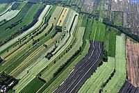 Felder: EUROPA, DEUTSCHLAND, NIESDERSACHSEN, (EUROPE, GERMANY), 18.05.2008: Felder am Rande des Teufelsmoors, Acker, Strucktur, .