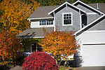 Gray House with Autumn Trees