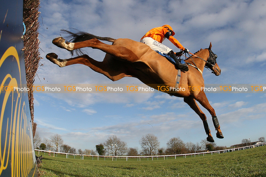Court Red Handed ridden by Charlie Huxley in jumping action in the Connolly's Red Mills Racecourse Cubes Novices' Chase at Huntingdon Racecourse, Brampton, Cambridgeshire - 27/01/12 - MANDATORY CREDIT: Gavin Ellis/TGSPHOTO - Self billing applies where appropriate - 0845 094 6026 - contact@tgsphoto.co.uk - NO UNPAID USE.