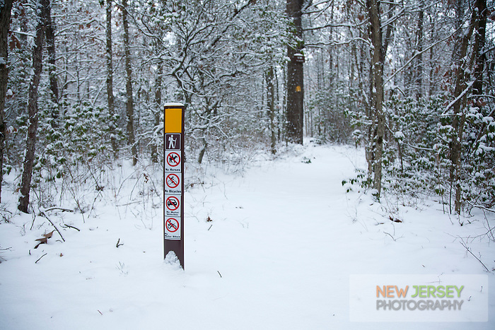 Entrance to the Batona Trail, Wharton State Forest, New Jersey