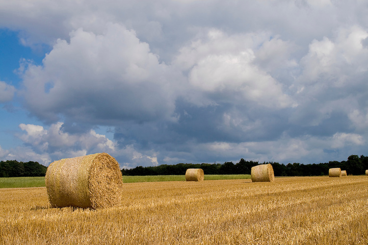 Europa, DEU, Deutschland, Nordrhein Westfalen, NRW, Rheinland, Niederrhein, Sonsbeck, Sonsbecker Schweiz, Agrarlandschaft, Feld nach der Getreideernte, Strohballen, Wolken, Wolkenstimmung, Kategorien und Themen, Landwirtschaft, Landwirtschaftlich, Agrar, Agrarwirtschaft, Erzeugung, Landwirtschaftliche Produkte, Wetter, Himmel, Wolken, Wolkenkunde, Wetterbeobachtung, Wetterelemente, Wetterlage, Wetterkunde, Witterung, Witterungsbedingungen, Wettererscheinungen, Meteorologie, Bauernregeln, Wettervorhersage, Wolkenfotografie, Wetterphaenomene, Wolkenklassifikation, Wolkenbilder, Wolkenfoto....[Fuer die Nutzung gelten die jeweils gueltigen Allgemeinen Liefer-und Geschaeftsbedingungen. Nutzung nur gegen Verwendungsmeldung und Nachweis. Download der AGB unter http://www.image-box.com oder werden auf Anfrage zugesendet. Freigabe ist vorher erforderlich. Jede Nutzung des Fotos ist honorarpflichtig gemaess derzeit gueltiger MFM Liste - Kontakt, Uwe Schmid-Fotografie, Duisburg, Tel. (+49).2065.677997, ..archiv@image-box.com, www.image-box.com]