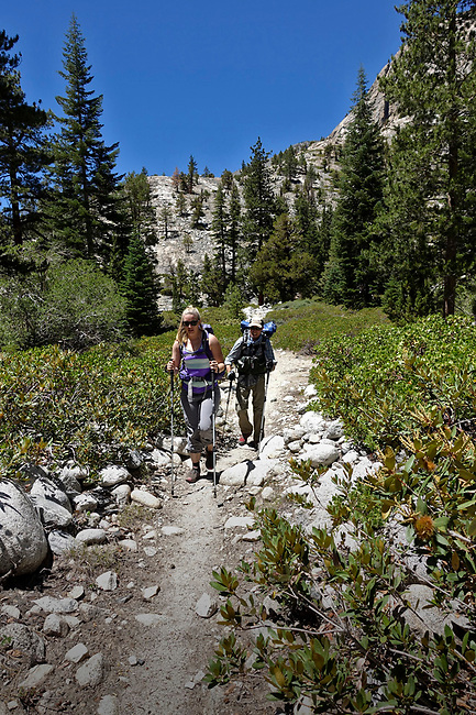 Pacific Crest Trail in Kings Canyon National Park