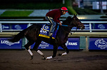 October 30, 2019: Breeders' Cup Distaff entrant Ollie's Candy, trained by John W. Sadler, exercises in preparation for the Breeders' Cup World Championships at Santa Anita Park in Arcadia, California on October 30, 2019. Michael McInally/Eclipse Sportswire/Breeders' Cup/CSM