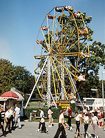 Willow Grove Amusement Park Ferris Wheel in 1960.