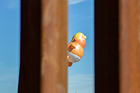 "MEXICALI, MEXICO - April 5 A balloon ""baby Trump"" its seen in Calexico, California thru border fence from the mexican side on April 5, 2019 in Mexicali, Mexico.<br /> President Trump on Friday visited Calexico, a small city in a largely agricultural region between Arizona and the Pacific, to inspect an upgraded portion of fencing and to meet with law enforcement. That's more attention than usual for a border town that locals say is defined by its interconnection with Mexico, its infernal summers and its labor-based economy. <br /> (Photo by Luis Boza/VIEWpress)"