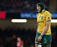 Australia's Adam Coleman<br /> <br /> Photographer Simon King/CameraSport<br /> <br /> International Rugby Union - 2017 Under Armour Series Autumn Internationals - Wales v Australia - Saturday 11th November 2017 - Principality Stadium - Cardiff<br /> <br /> World Copyright &copy; 2017 CameraSport. All rights reserved. 43 Linden Ave. Countesthorpe. Leicester. England. LE8 5PG - Tel: +44 (0) 116 277 4147 - admin@camerasport.com - www.camerasport.com