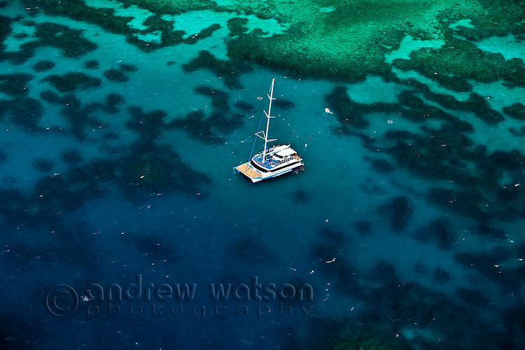 Aerial view of tourist boat anchored at Arlington Reef, near Cairns.  Great Barrier Reef Marine Park, Queensland, Australia