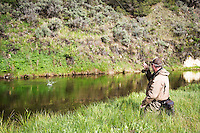 Mike Kallock connects with a rainbow trout on Big Sheep Creek near Dillon in southwest Montana.