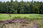 HENGELO (GLD) - hole 11. golfbaan 't Zelle . COPYRIGHT KOEN SUYK