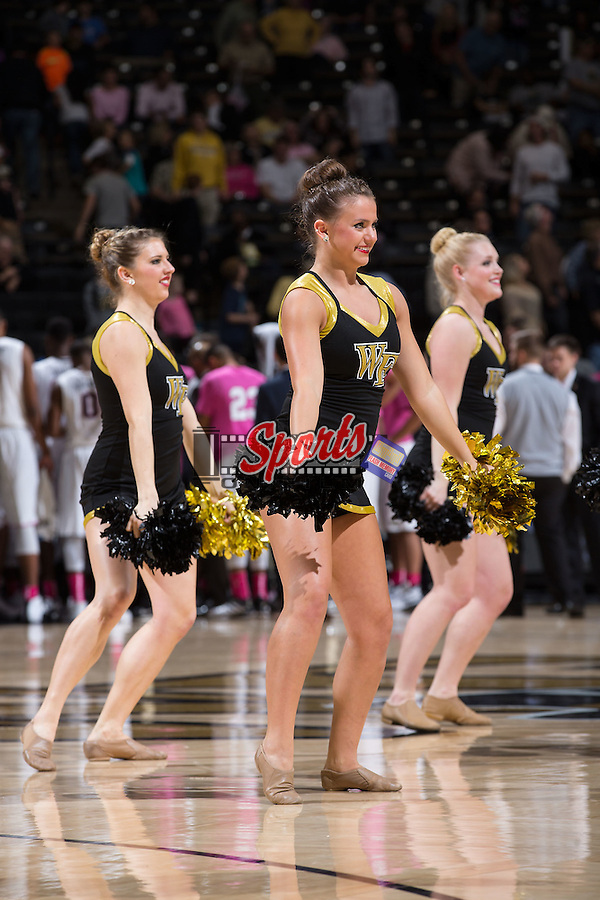 Members of the Wake Forest Demon Deacons dance team entertain the crowd during a time out in the game against the UNCG Spartans at the LJVM Coliseum on December 15, 2015 in Winston-Salem, North Carolina.  The Demon Deacons defeated the Spartans 81-71.  (Brian Westerholt/Sports On Film)