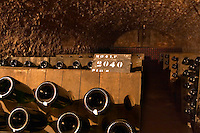 In the wine cellar: Bottles in racks (pupitres) for remuage (riddling of the bottles) to make the sediment move down to the cork, the Union Champagne cooperative, also called Champagne de Saint Gall in Avize, Cote des Blancs, Champagne, Marne, Ardennes, France