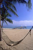 Hammock and palm tree on beach with dock, Nha Trang, Vietnam