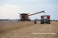 63801-07212 Soybean harvest with Case IH combine in Marion Co. IL