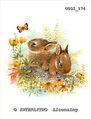 GIORDANO, EASTER, OSTERN, PASCUA, paintings+++++,USGI174,#E# rabbits