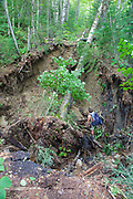 Flash floods from Tropical Storm Irene in 2011 wash out a section of the Wilderness Trail (formerly Cedar Brook Trail) in the Pemigewasset Wilderness of Lincoln, New Hampshire USA revealing artifacts from the East Branch & Lincoln Railroad era. This storm caused extensive damage along the East coast of the United States. And the White Mountain National Forest of New Hampshire was officially closed during the storm.