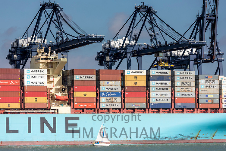 Foreign container ships at Port of Felixstowe handling 42% of British containerised trade under pre Brexit free trade agreement rules
