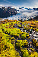 Moss and mountain stream, Exit glacier, Kenai Fjords National Park,  Kenai Peninsula, southcentral, Alaska.