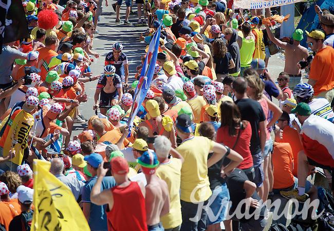 Sylvain Chavanel (FRA/IAM) & Jarlinson Pantano (COL/IAM) experiencing the craziness at the Dutch Corner (nr7) up Alpe d'Huez<br /> <br /> stage 20: Modane Valfréjus - Alpe d'Huez (111km)<br /> 2015 Tour de France