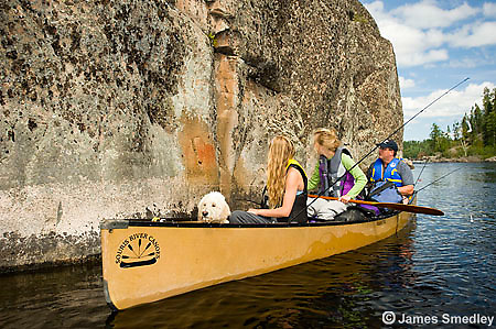 People and their dog viewing pictographs from their canoe along the shore.