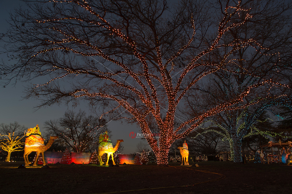 Zilker Park Trail of Lights, Three wise men on Camel