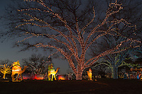 Zilker Park Trail of Lights, Three wise men on Camel