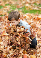 Boy collecting fall leaves