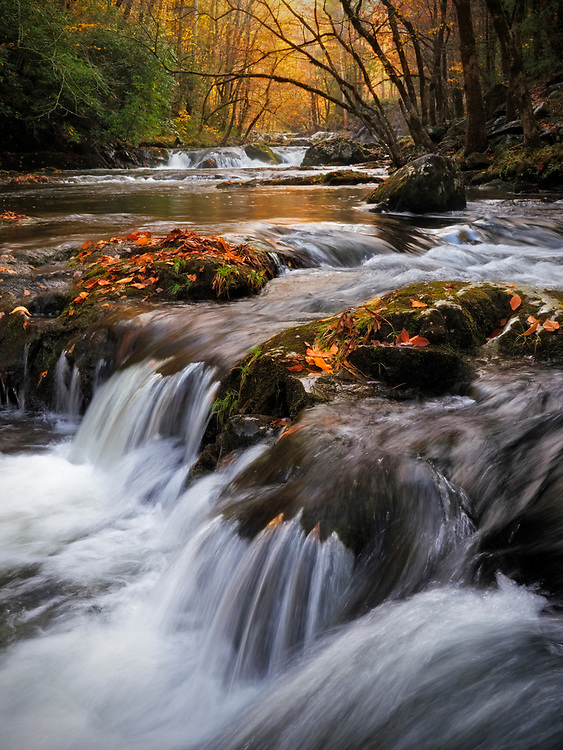 Waterfalls cascade down the Little River along Tremont Road in autumn in the Great Smoky Mountains National Park, Tennessee, USA