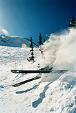 USA, Utah, person skiing and wiping out, Baldy Shoulder, Alta Ski Area