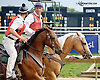 Outriders at Delaware Park on 9/18/14