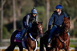 OCT 28: Breeders' Cup Juvenile Fillies Turf entrant Abscond, trained by Eddie Kenneally,  works at Santa Anita Park in Arcadia, California on Oct 28, 2019. Evers/Eclipse Sportswire/Breeders' Cup