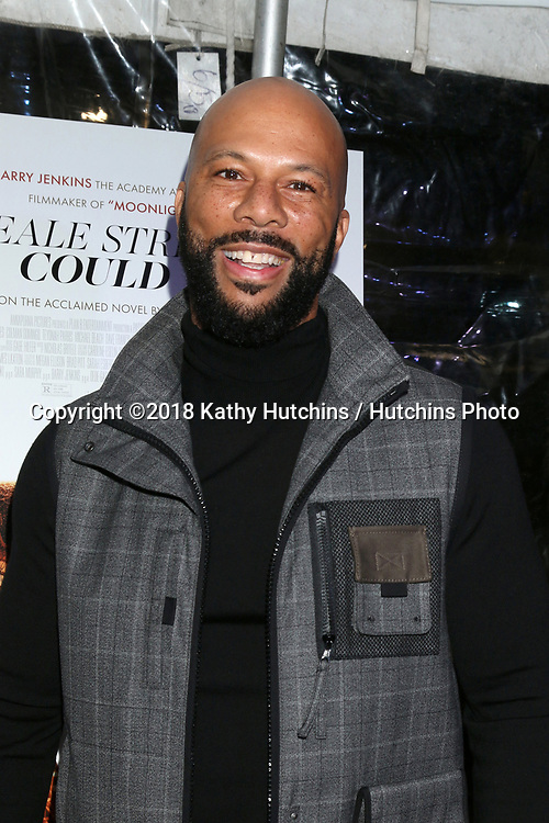 "LOS ANGELES - DEC 4:  Common at the ""If Beale Street Could Talk"" Screening at the ArcLight Hollywood on December 4, 2018 in Los Angeles, CA"