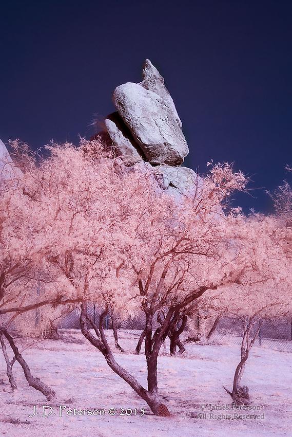 Granite Boulder and Mesquites, Texas Canyon, Arizona (Infrared)