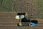 Foto: VidiPhoto<br /> <br /> RANDWIJK – De maisoogst in de Betuwe is donderdag in volle gang. Ook dit jaar komen de Betuwse boeren er beter af dan hun collega's in de Achterhoek en op de Veluwe, hoewel regenval de laatste weken nog wat heeft goedgemaakt in die gebieden. De kwaliteit van stengels en kolven (gewashoogte en afrijping) is in de Betuwe echter fors beter, vertelt loonwerker Jan Gerritsen uit Heelsum (foto). Dat komt omdat de rivierklei in het gebied vocht beter vast houdt. De oogst komt bovendien precies op tijd. Door het natte weer van de afgelopen dagen wordt het al wat lastiger manouvreren  voor de zware landbouwmachines op de akkers. Komende week wordt nog meer regen verwacht. De mais die Gerritsen donderdag hakselt is bestemd voor de koeien van melkveehouder Hoogervorst in het Gelderse Randwijk.