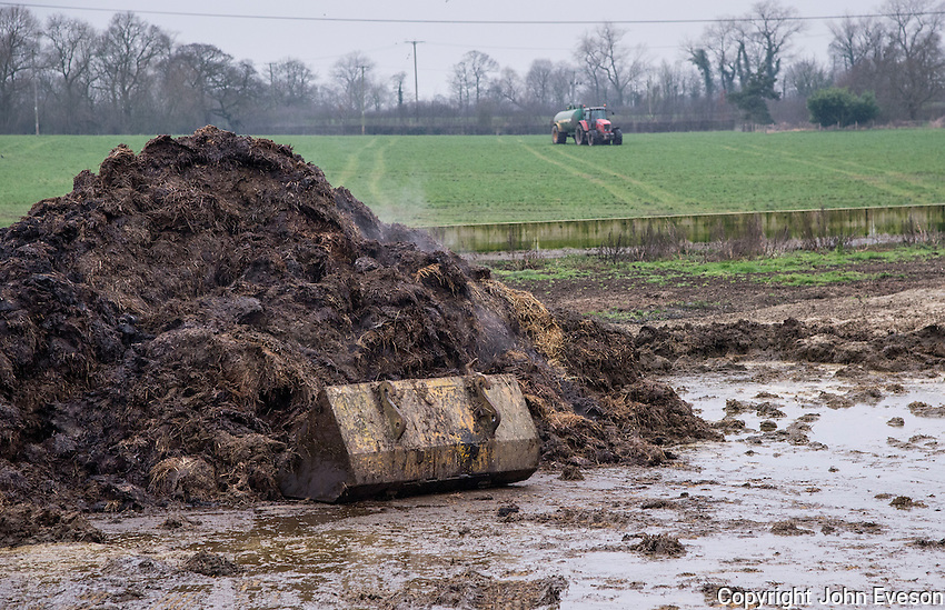 A pile of farmyard manure with a tractor and slurry tanker in a grass field in the background, Cheshire.
