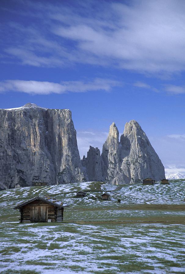 Farm huts, Alpe di Suisi, Italian Dolomites, Italy