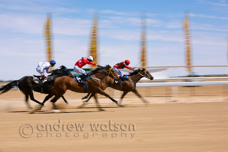 Horse racing in the outback at the Birdsville Cup races.  Every September the remote town of Birdsville in southwest Queensland hosts thousands of visitors for the most famous bush racing carnival in Australia.  Birdsville, Queensland, AUSTRALIA.