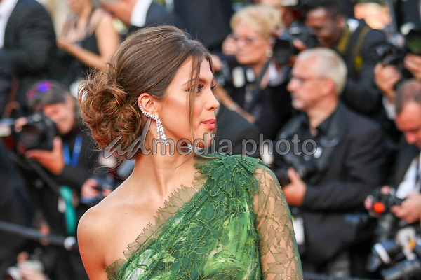 "24 May 2017 - Cannes, France - Iris Mittenaere . ""The Beguiled"" Premiere during the 70th Cannes Film Festival. Photo Credit: GeorgWenzel/face to face/AdMedia"