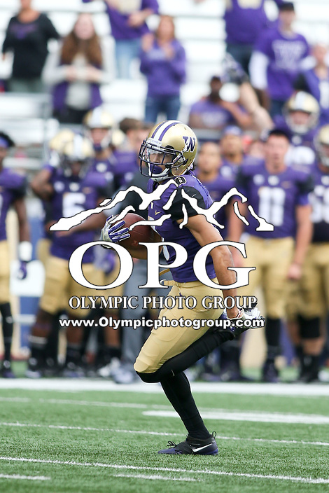 03 September 2016:  Washington's Dante Pettis against Rutgers.  Washington defeated Rutgers 48-13 at the University of Washington in Seattle, WA.