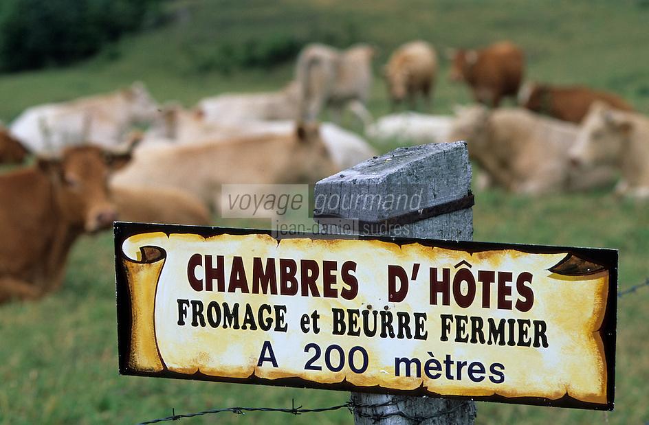 Europe/France/Auvergne/63/Puy-de-Dôme/Env de Beaune Le Froid: Panneau chambres d'hôtes et fromage fermier