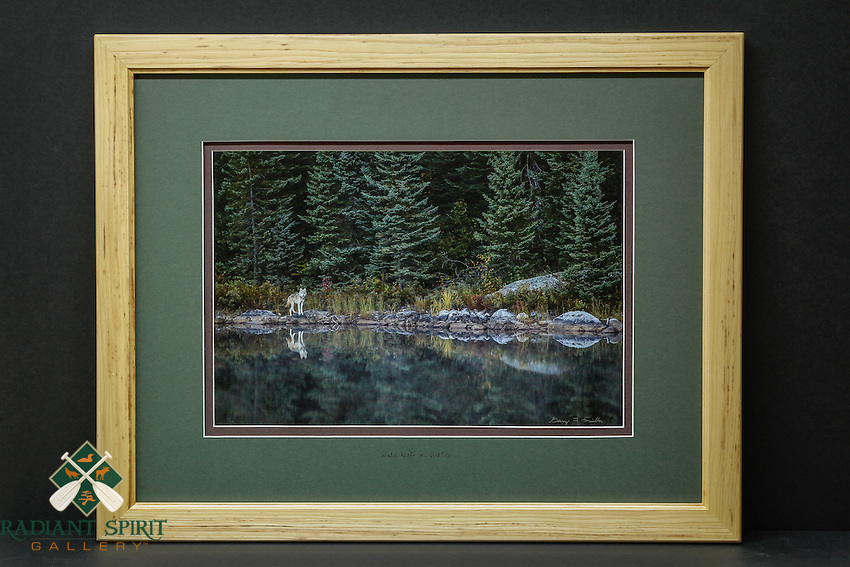 """""""Wild Wolf in Quetico"""", hand-made hickory frame, conservation grade matting, TruVue Museum Glass. Contact us for availability."""