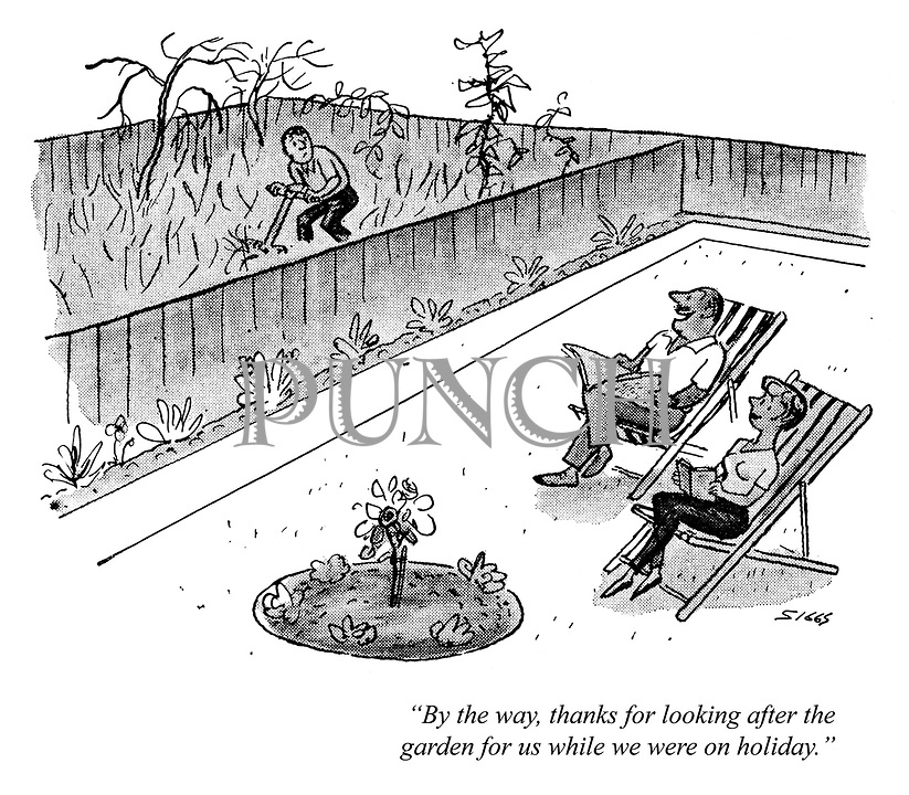 """""""By the way, thanks for looking after the garden for us while we were on holiday."""""""