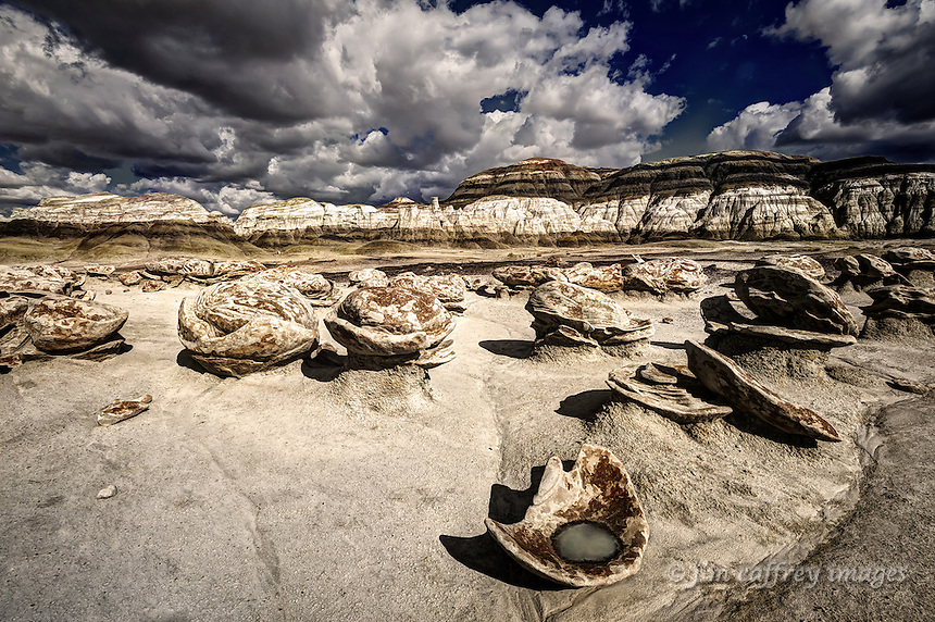 A basin shaped rock in the Egg Garden of the Bisti Wilderness with water in it after a thunderstorm.