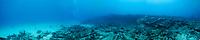 Underwater panorama of divers exploring the City of Washington shipwreck off Key Largo, Florida