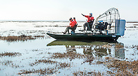 2015-01-20_URBAN WILDLIFE_Don Edwards NWR Airboat Ridgway Rail survey