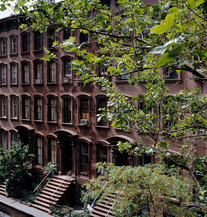 A block of New York brownstone town houses on a leafy West Village street