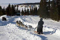Aaron Burmeisters team on trail into Elim on Norton Sound 2006 Iditarod Western Alaska Winter Bering Sea