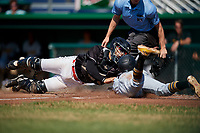Batavia Muckdogs catcher Igor Baez (29) tags out Michael De La Cruz (30) during a game against the West Virginia Black Bears on July 1, 2018 at Dwyer Stadium in Batavia, New York.  Batavia defeated West Virginia 8-4.  (Mike Janes/Four Seam Images)