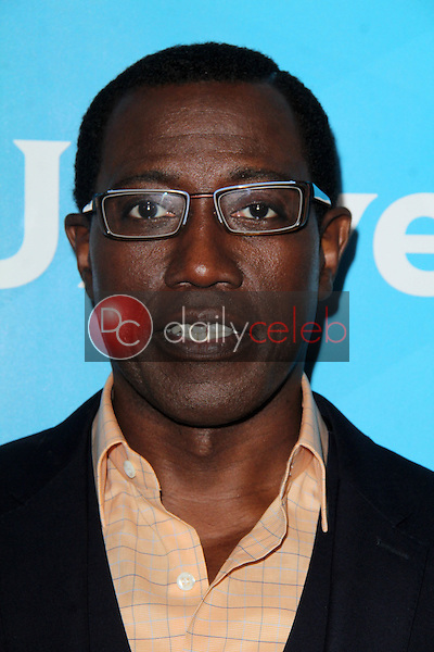 Wesley Snipes<br />