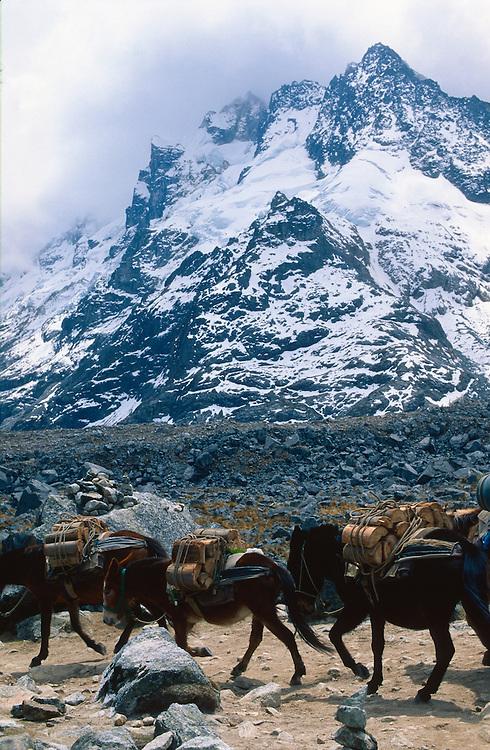 Salkantay trek, Peru, 2016.